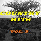 Country Hits, Vol. 3 de Various Artists