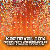 Karneval 2014 - Narren, Party und gute Laune die Top 50 Karnevalssongs 2014 by Various Artists