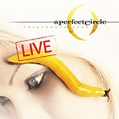 Thirteenth Step - Live de A Perfect Circle