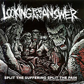 Split the Suffering Split the Pain by Looking for an Answer