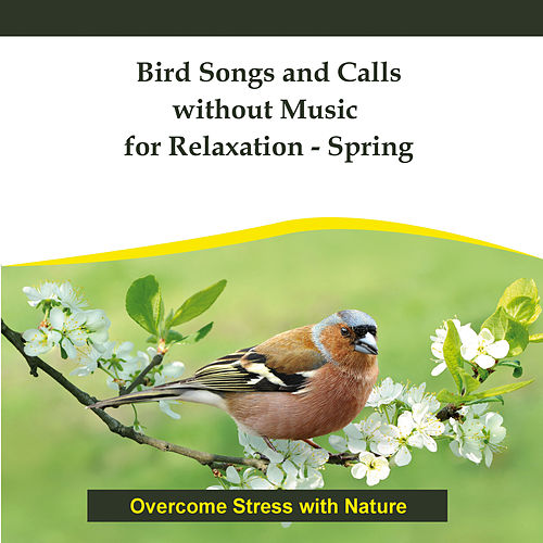 Bird Songs and Calls without Music for Relaxation - Spring by Rettenmaier