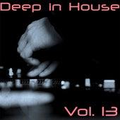 Deep in House, Vol. 13 di Various Artists