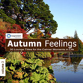 Napster Pres. Autumn Feelings 3 - 30 Lounge titles for the calmer moments in life by Various Artists