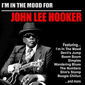 I'm In the Mood for John Lee Hooker de John Lee Hooker