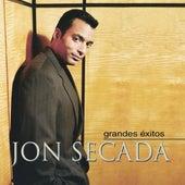 Grandes Exitos de Jon Secada