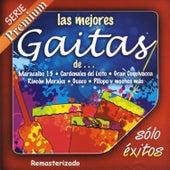Las Mejores Gaitas De... by Various Artists