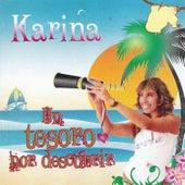 Un Tesoro por Descubrir by Karina