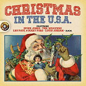 Christmas in the U.S.A. de Various Artists