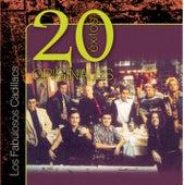 Originales - 20 Exitos by Los Fabulosos Cadillacs