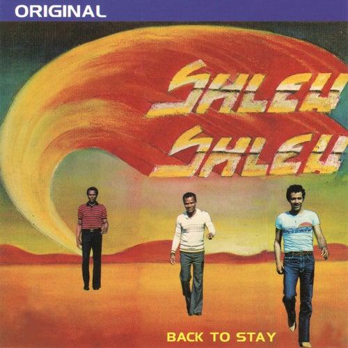 Back To Stay by Shleu Shleu
