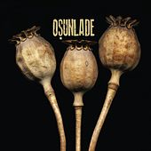 Dionne / What Gets You High? by Osunlade