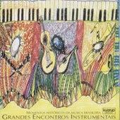 Grandes Encontros Instrumentais (Momentos Históricos da Música Brasileira) de Various Artists
