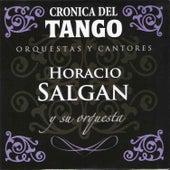 Crónica del Tango: Orquestas y Cantores by Horacio Salgan