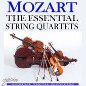 Mozart: The Essential String Quartets by Mozarteum String Quartet
