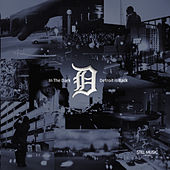 In The Dark: Detroit Is Back by Various Artists