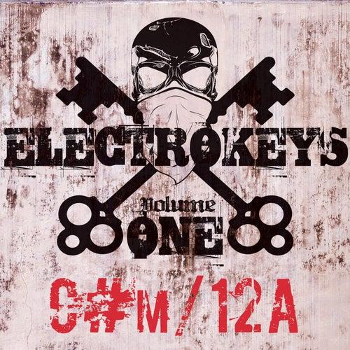 Electro Keys C#m/12a Vol 1 de Various Artists