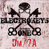 Electro Keys Dm/7a Vol 1 by Various Artists
