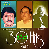 30 Hits 3 Great Artists, Vol. 2 von Various Artists