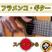 20 フラメンコ・ギター von Various Artists