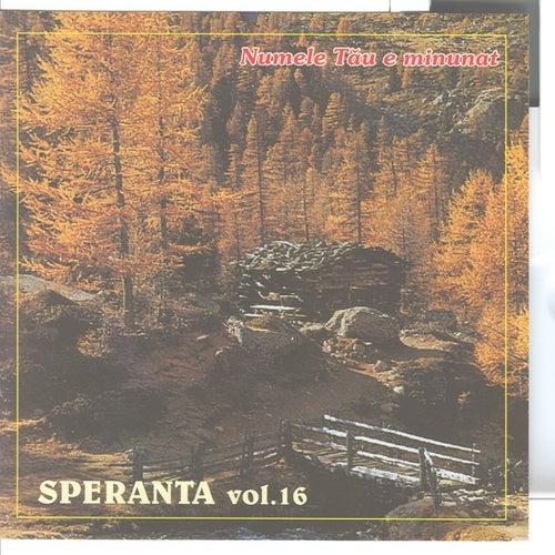Speranta, Vol. 16 (Numele Tau e minunat) by Speranta