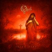 Still Life (Remastered Edition) von Opeth