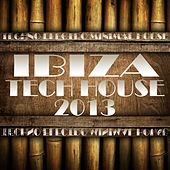 Ibiza Tech House 2013 (Balearic Electronicas of Techno, Electro, Minimal, House) by Various Artists