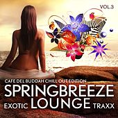 Springbreeze Exotic Lounge Traxx, Vol. 3 (Cafe Del Buddah Chill Out Edition) by Various Artists