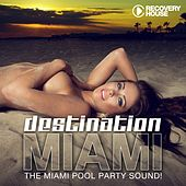 Destination Miami 2013 (The Miami Pool Party Sound) by Various Artists