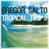Gregor Salto - Tropical Tips 3 von Various Artists