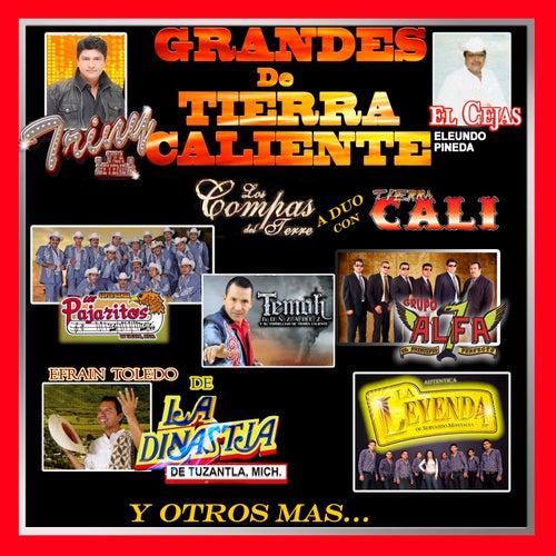Los Grandes de Tierra Caliente by Various Artists