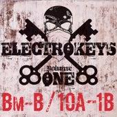 Electro Keys Bm-B/10a-1b Vol 1 de Various Artists