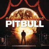 Everybody F*cks by Pitbull