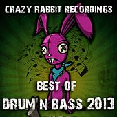 Crazy Rabbit Recordings: Best of Drum and Bass 2013 by Various Artists