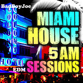 Badboyjoe's Miami House 5am EDM Sessions by Various Artists
