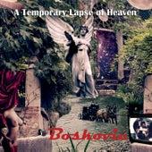 A Temporary Lapse of Heaven di Boskovic