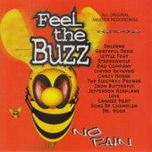 Feel the Buzz: No Pain de Various Artists