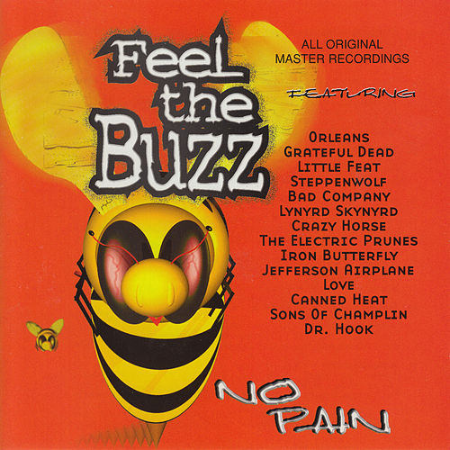 Feel the Buzz: No Pain von Various Artists