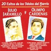 20 Éxitos de los Idolos del Barrio by Various Artists