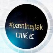 Pænt Nej Tak (Ollie B Remix) von Nik & Jay