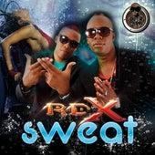 Sweat - Single by RDX