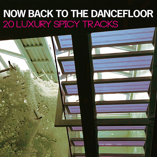 Now Back to the Dancefloor (20 Luxury Spicy Tracks) by Various Artists