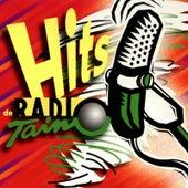 Hits De Radio Taino by Various Artists