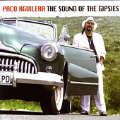 The Sound Of The Gipsies by Paco Aguilera