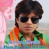 Pankaj Kesari - Hum Hai Hero Hiralal by Various Artists