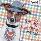 Das  Superfest der Volksmusik, Vol. 6 de Various Artists
