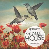 We Call It House, Vol. 11 by Various Artists