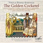 Rimsky-Korsakov: Golden Cockerel by Olga Shalaeva