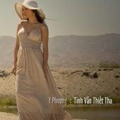 Tinh Van Thiet Tha von Y Phuong