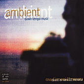 Ambient Down Tempo Music (Cova D'en Xoroi 02. Menorca) by Various Artists