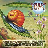 The Bits Between the Bits & Sliding Gliding Worlds von Ozric Tentacles